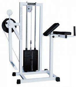 Тренажер для ягодичных мышц бедра радиальный 263x300 Тренажеры в зале Спартак