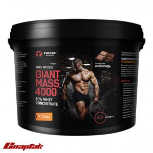 giant mass 4000 80whey glutamine