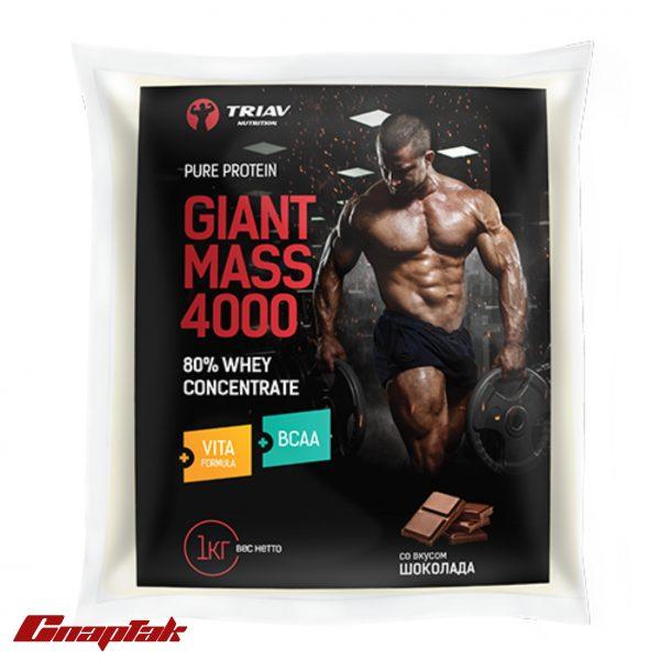 giant mass 4000 80whey vita bcaa