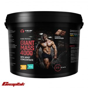 giant mass 4000 80whey vita bcaa
